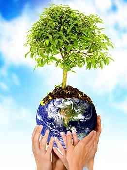 Ecologia-e-Meio-ambiente